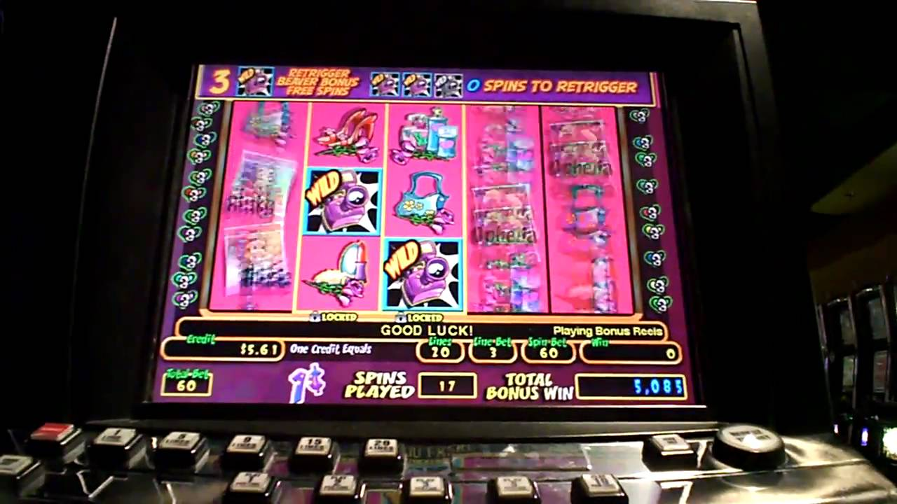 Dam kortspel Bgo casino Extraklasse
