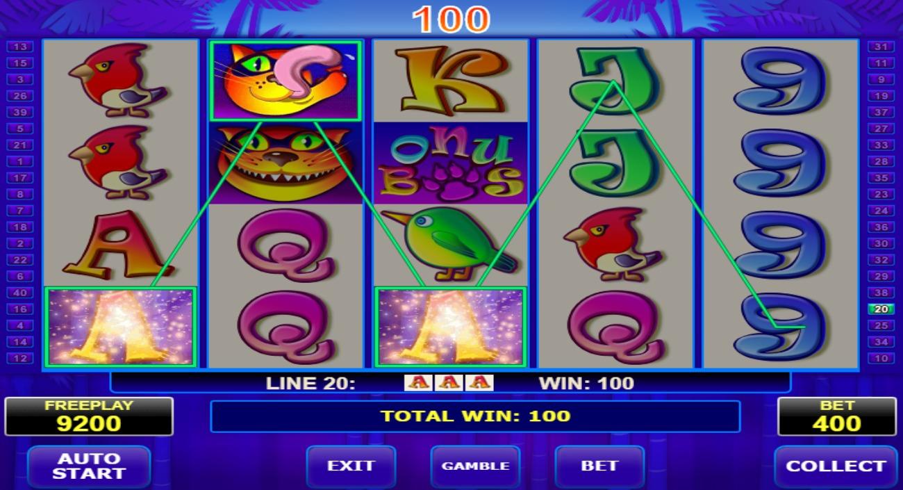 Spela live casino Bob Tab